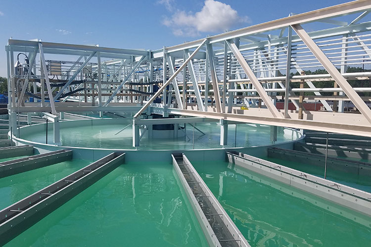 Water Treatment and Wastewater Process